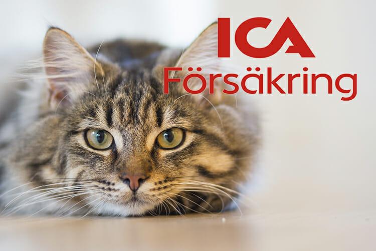 ica-forsakring