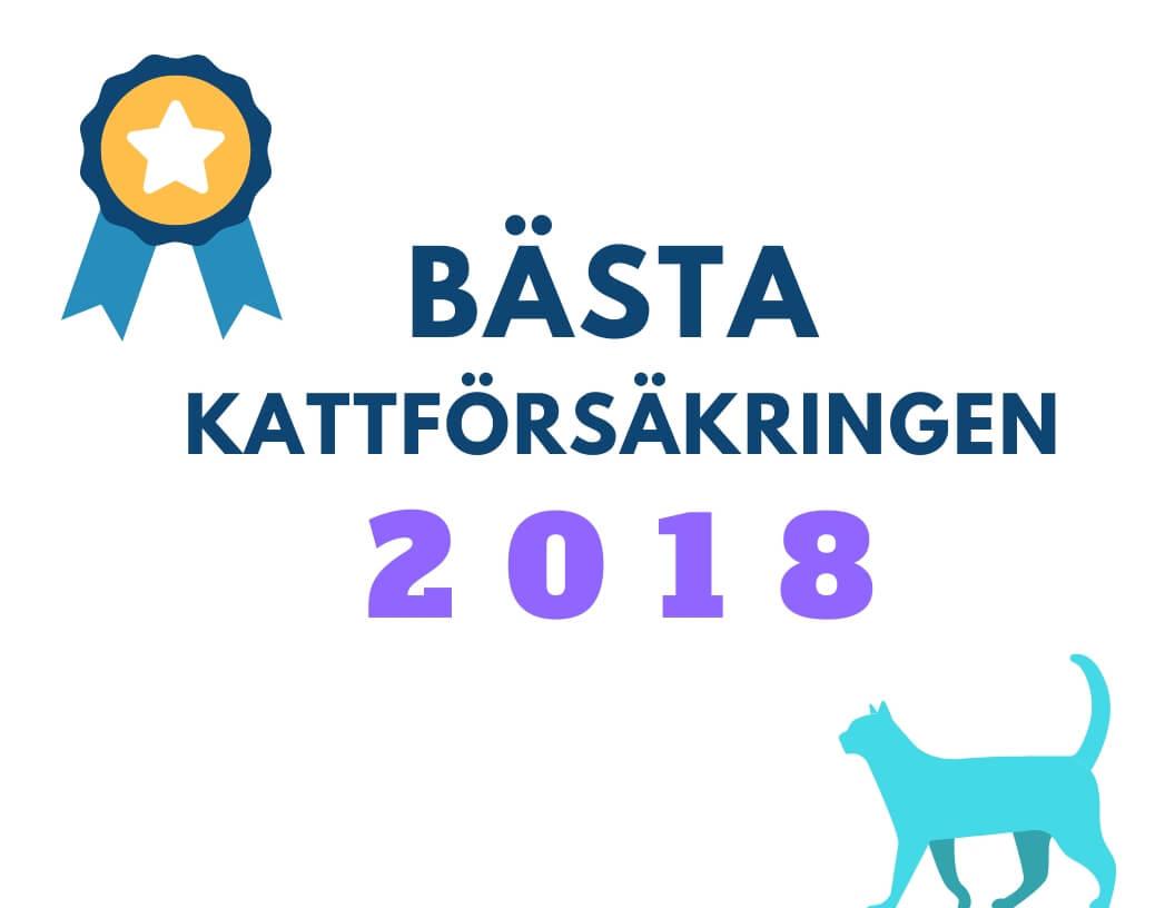 bäst kattförsäkring 2018